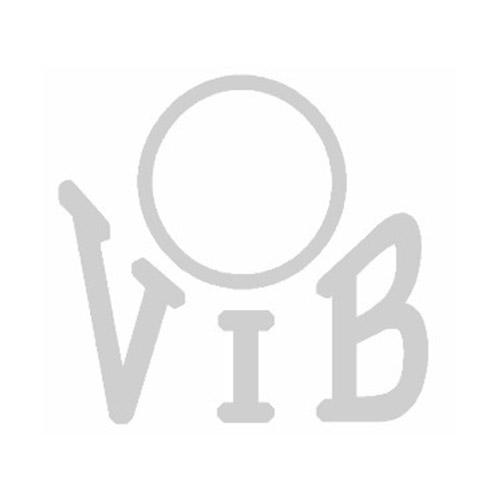 VIB - Verband der Ingenieur-Beamten in Bayern e.V.